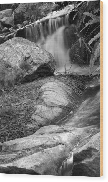 Highlight River Wood Print by Brad Scott