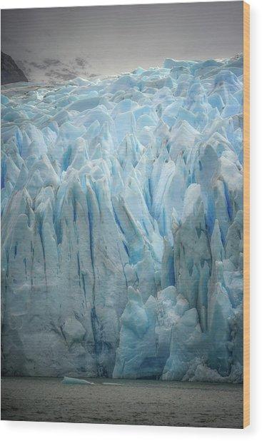 Highlighter Ice Wood Print