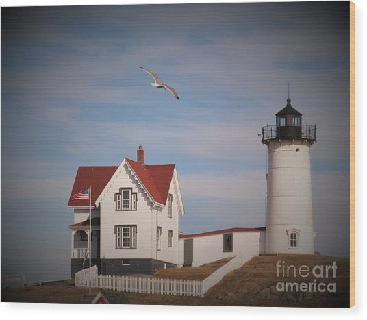 Highlighting The Nubble Light Wood Print