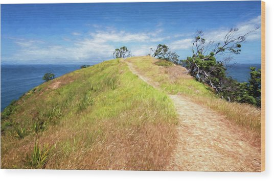 Hike To Whaler's Point Great Barrier Island New Zealand Wood Print