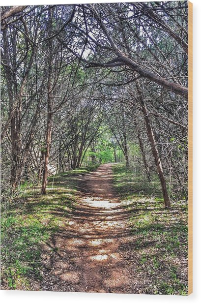 Hiking Meridian State Park  Wood Print