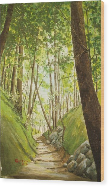 Hiling Path Wood Print by Charles Hetenyi