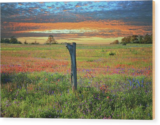 Hill Country Heaven Wood Print