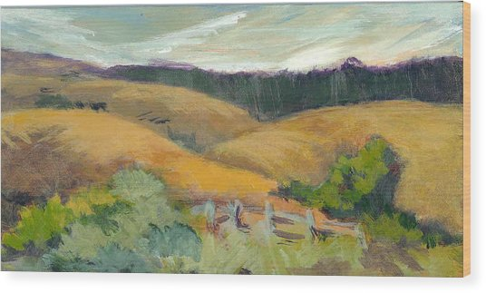 Hills Above Silicon Valley Wood Print by Barbara Moore