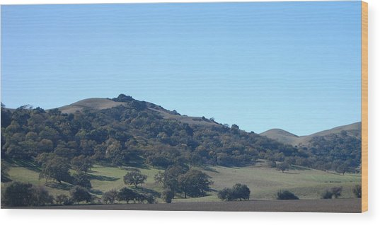 Hills Of Oak Wood Print by Jean Booth