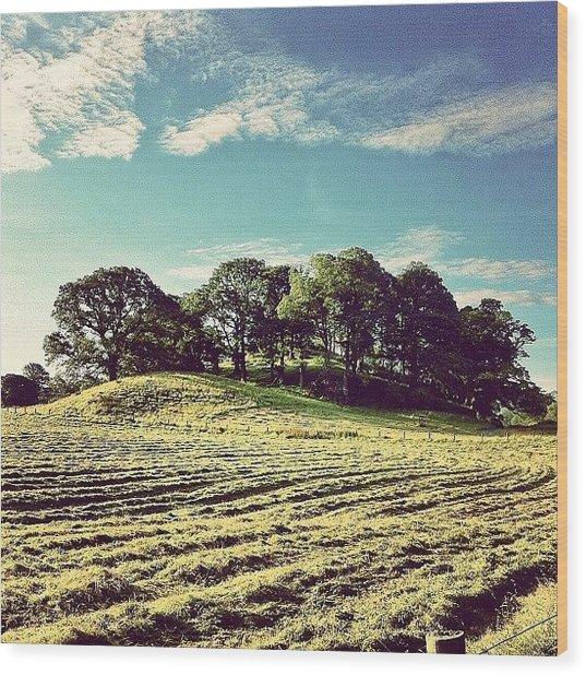 #hills #trees #landscape #beautiful Wood Print
