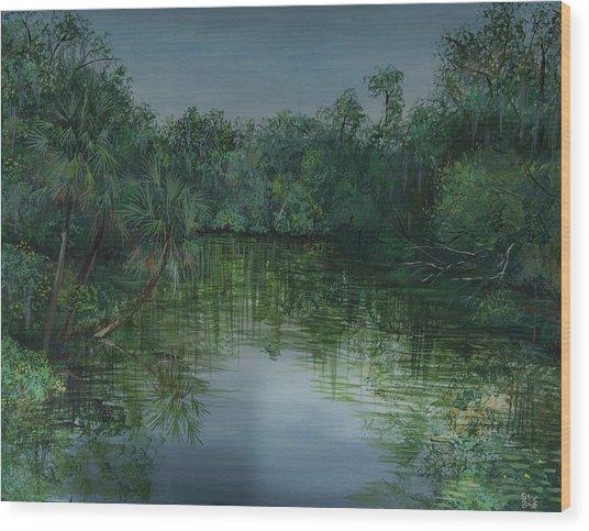 Hillsboro Flordia Wood Print