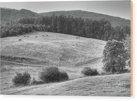 Hillside Hay Wood Print