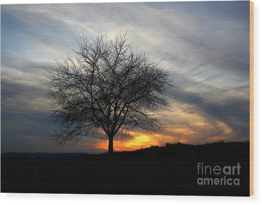 Hillside Morning Wood Print