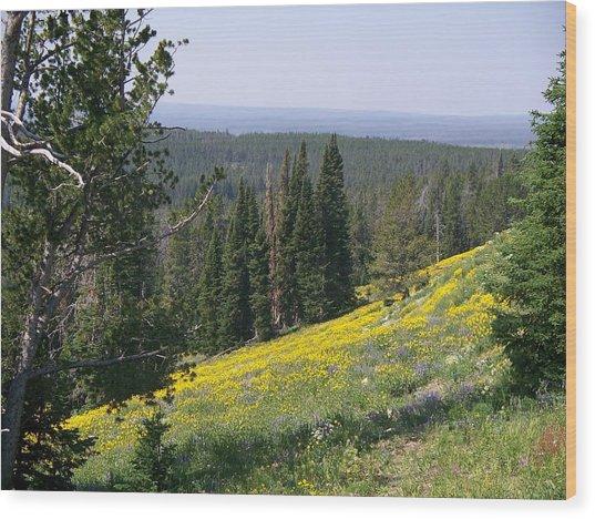 Hillside Wildflowers Wood Print