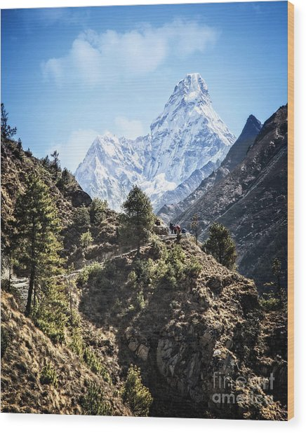 Himalaya Trail Wood Print
