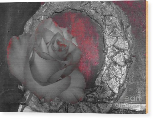 Hints Of Red - Rose Wood Print