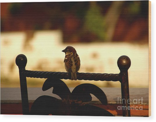 His Eye Is On The Sparrow Wood Print
