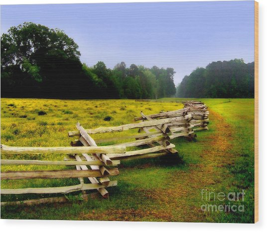 Wood Print featuring the photograph Historic Path Natchez Trace Parkway by T Lowry Wilson