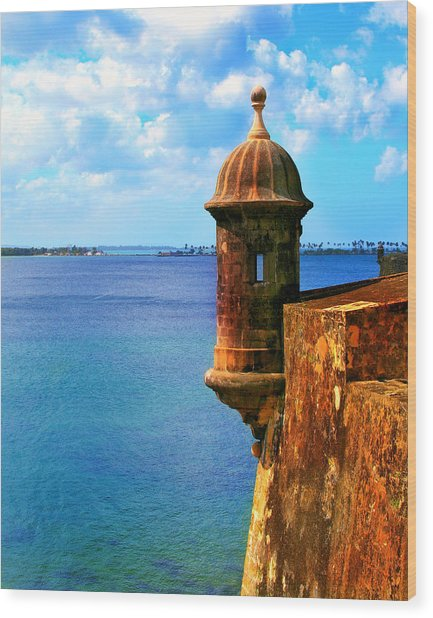 Historic San Juan Fort Wood Print