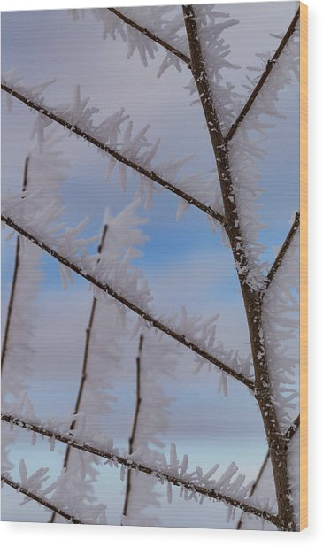 Hoarfrost Hopscotch Wood Print