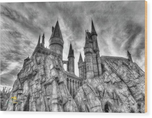 Wood Print featuring the photograph Hogwarts Castle 1 by Jim Thompson