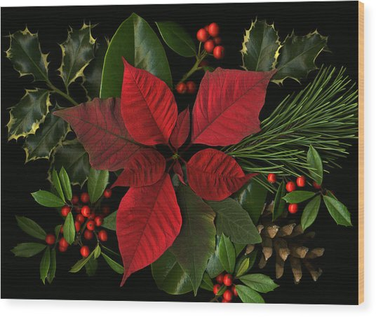 Holiday Greenery Wood Print by Deborah J Humphries