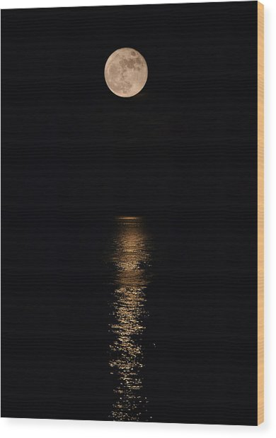 Holiday Magic - Lunar Art Wood Print