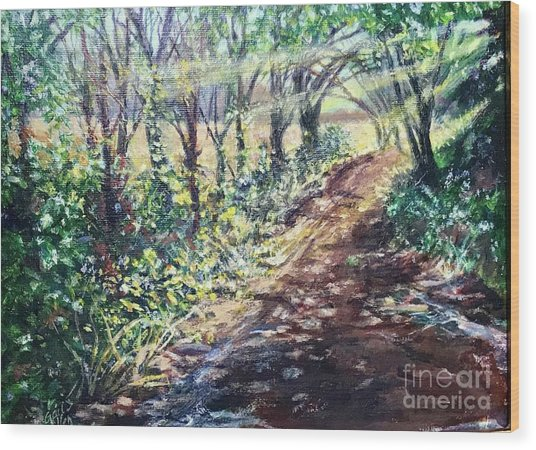 Hollis Road With Puddles Wood Print