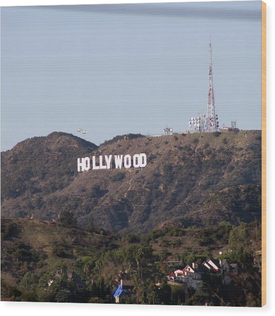 Hollywood And Helicopters Wood Print