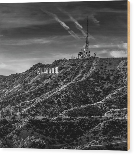 Hollywood Sign - Black And White Wood Print