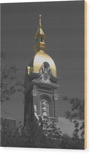 Holy Church Of The Immaculate Conception - Colorized Wood Print