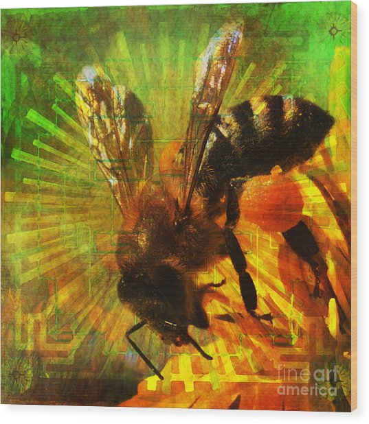 Homage To A Bee 2015 Wood Print