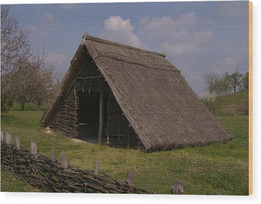 Home - Prehistory Edition Wood Print by Catja Pafort