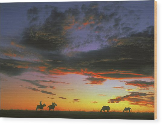 Home On The Range Wood Print by Carl Purcell