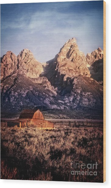 Wood Print featuring the photograph Homesteader by Scott Kemper