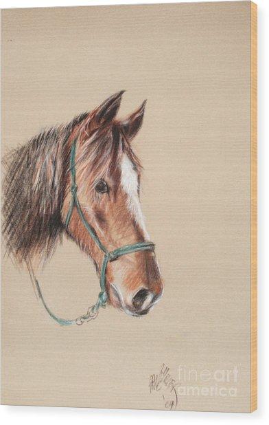 Honcho At The Morgan Horse Ranch Prns Wood Print by Paul Miller