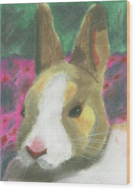 Honey Bunny Wood Print