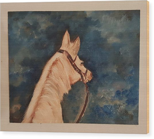 Honey Palomino Horse 28 Wood Print