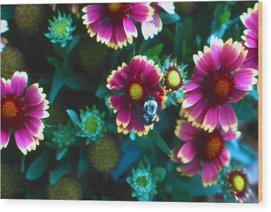 Honeybee And Flowers Wood Print