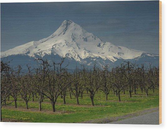 Hood Orchard Wood Print