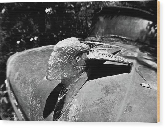Hood Ornament Detail Wood Print