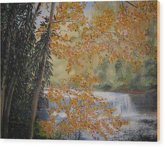 Hooker Falls Wood Print by Shirley Braithwaite Hunt