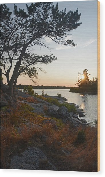 Hopewell Bay Island Wild Grass Sunset-1 Wood Print