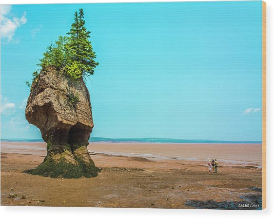 Hopewell Rocks In New Brunswick -  Canada Wood Print