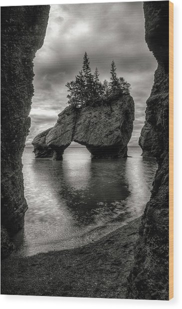 Hopewell Rocks Wood Print