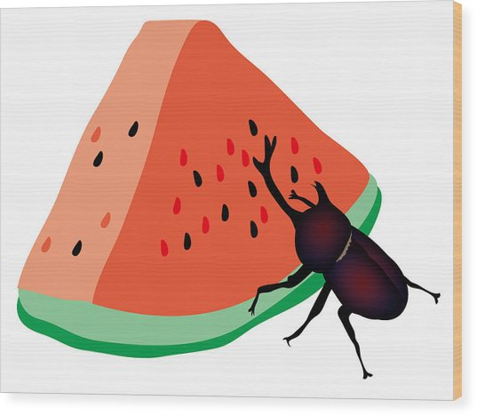 Horn Beetle Is Eating A Piece Of Red Watermelon Wood Print