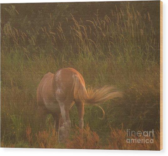 Horse 4 Wood Print
