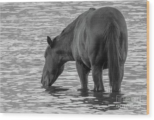 Horse 5 Wood Print
