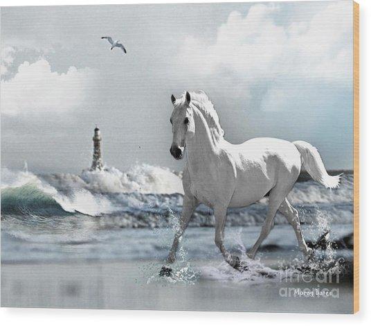 Horse At Roker Pier Wood Print