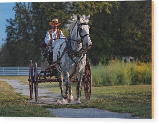 Horse And Buggy Wood Print by Lone Dakota Photography