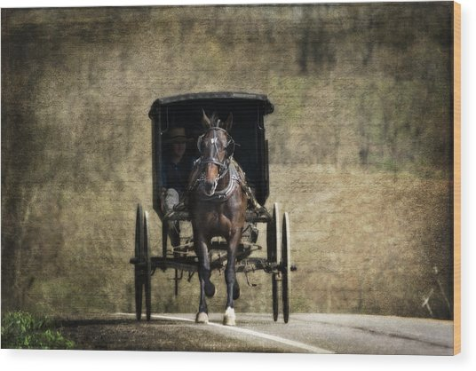 Horse And Buggy Wood Print