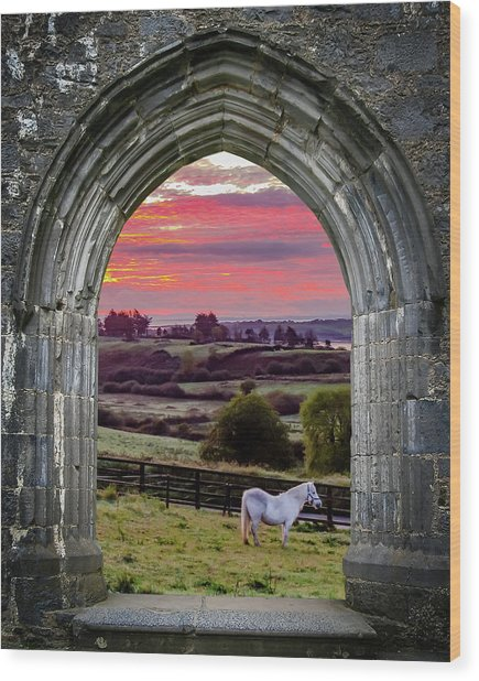 Wood Print featuring the photograph Horse At Sunrise In County Clare by James Truett