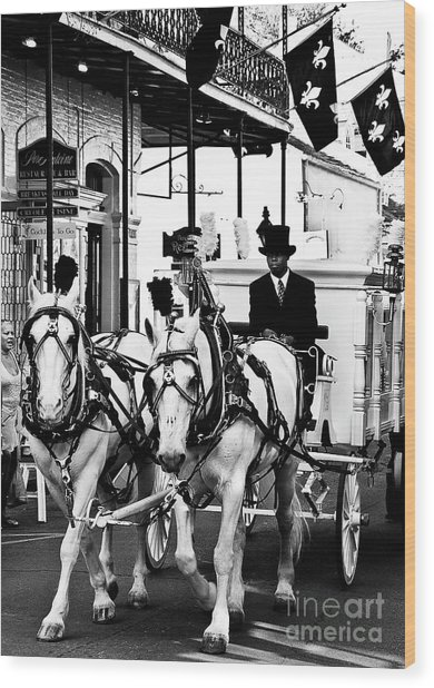Horse Drawn Funeral Carriage Wood Print