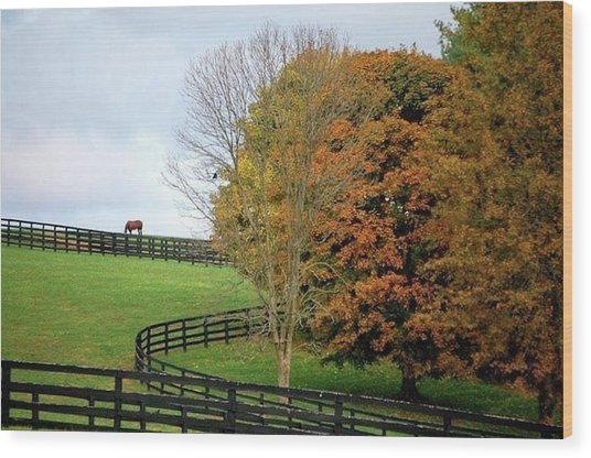 Horse Farm Country In The Fall Wood Print